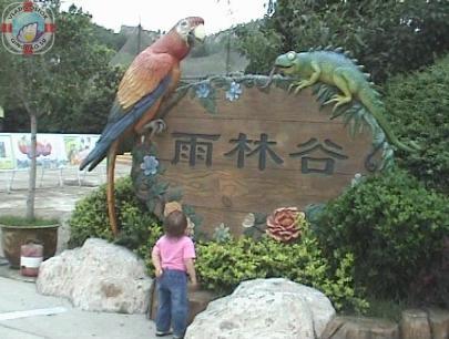 Долина динозавров в китайском городе Циндао. Животные дождевых лесов. Ископаемые животные на входе 雨林谷